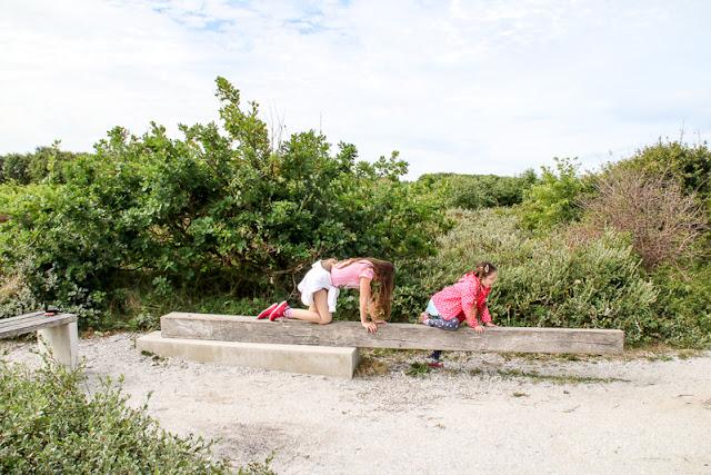 Dünenwanderung Ecomare auf Texel