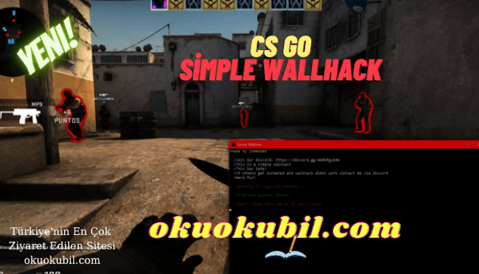 CSGO Simple WallHack v3 ESP Hilesi İndir Şubat 2021