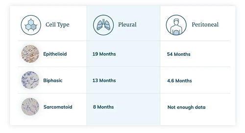 Stage 1 Mesothelioma