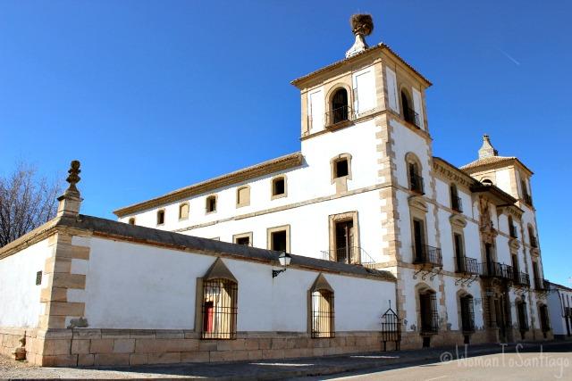 foto palacio de las torres