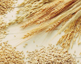 pareri forumuri gluten din cereale alternative.jpg