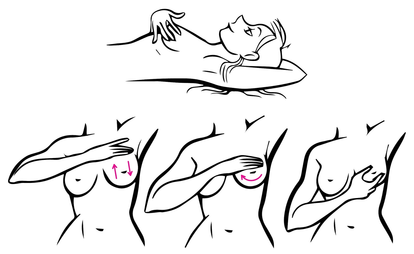 Breast self exam steps are mistaken
