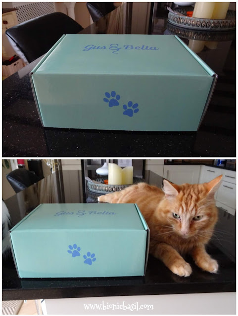 What's In The Box ©BionicBasil® Gus & Bella Santa Paws Box