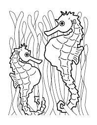 Seahorse Coloring Page 8