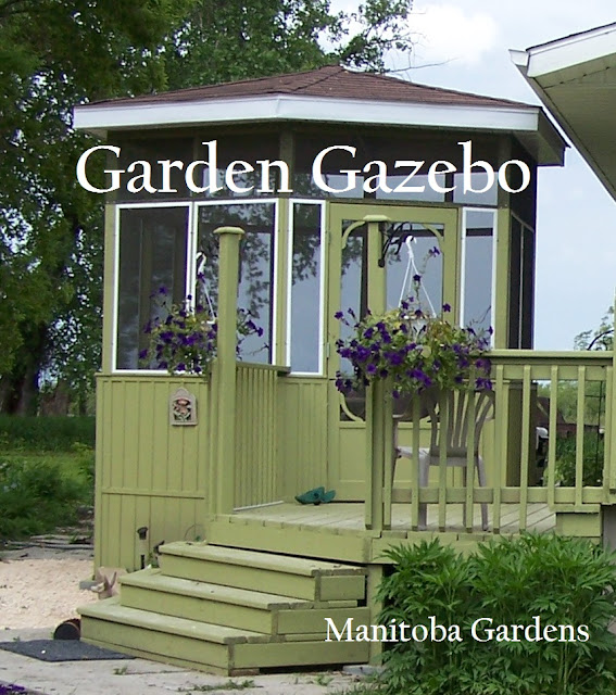 green and white gazebo constructed of wood