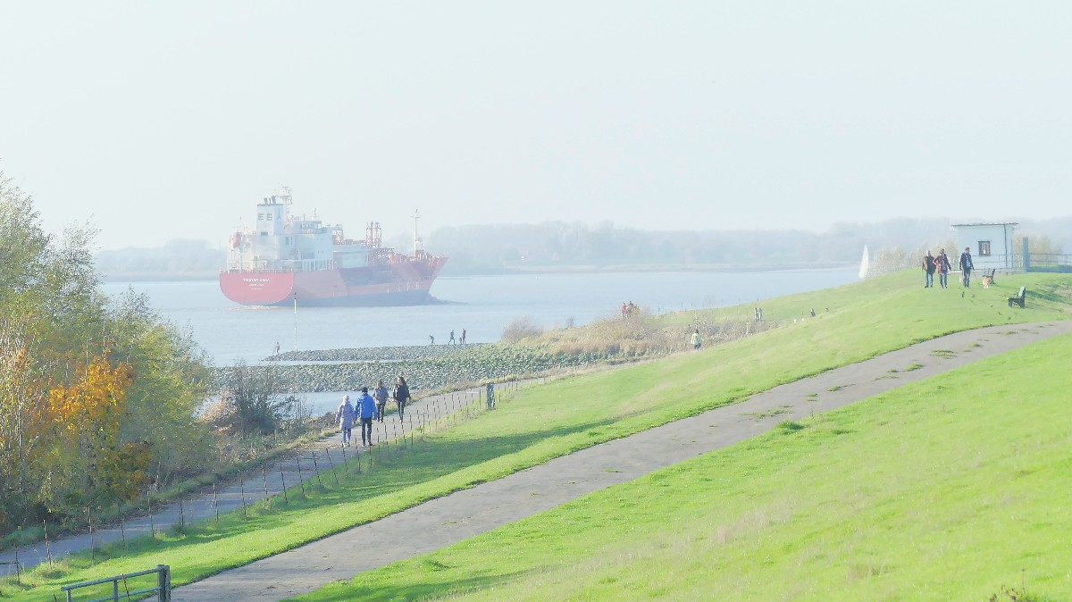 Die Elbe bei Kolmar