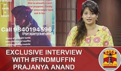 Exclusive Interview with FindMuffin Prajanya Anand | Inaiya Thalaimurai | Thanthi Tv
