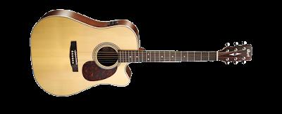 Jenis Gitar Akustik dan Elektrik Beserta Harganya