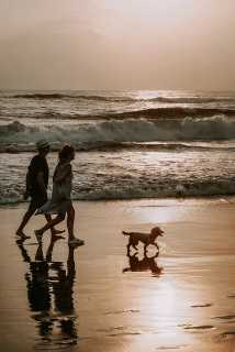 Top Best 10 Reasons to Explore San Diego, San Diego Beaches