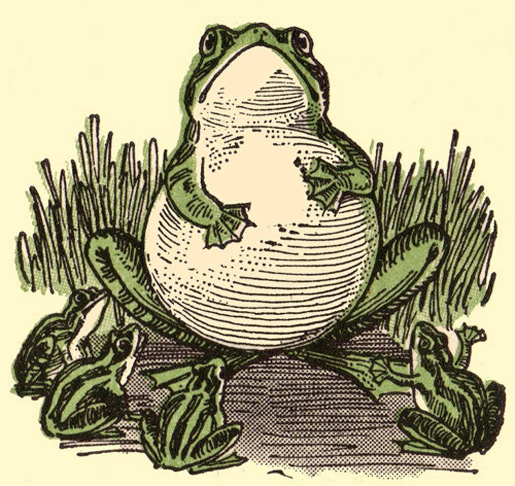 Vintage Frog 45