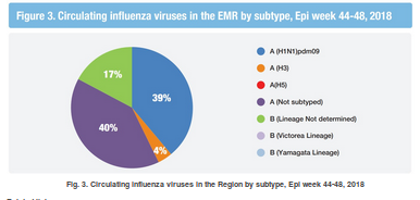 http://www.emro.who.int/pandemic-epidemic-diseases/influenza/influenza-monthly-update-november-2018.html