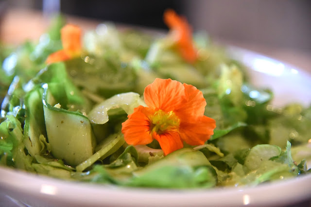 Nasturtium flowers on a green salad for eating