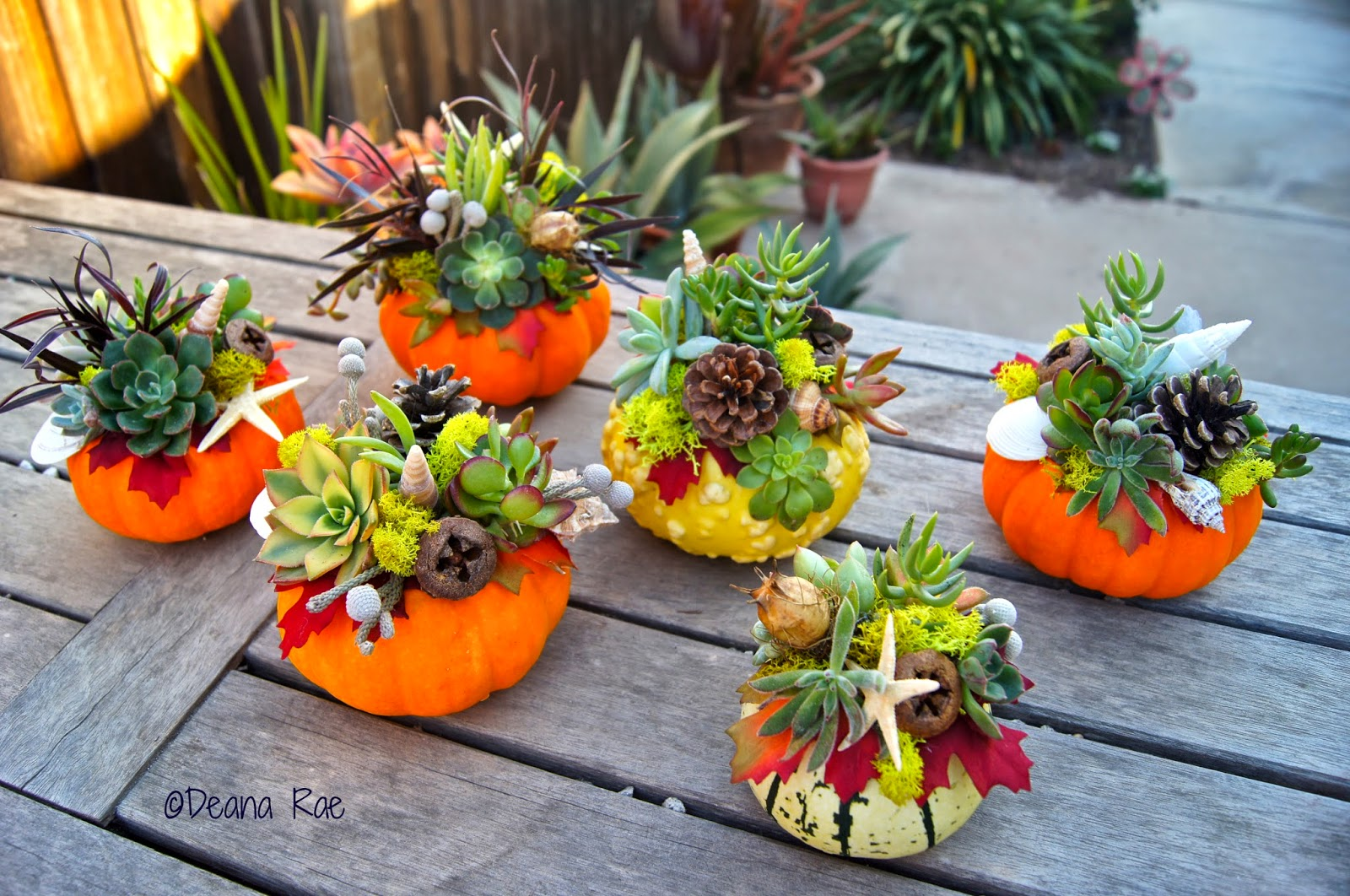 Fall Floral Arrangements It S All Here Succulent Wreath