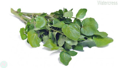 watercress greens