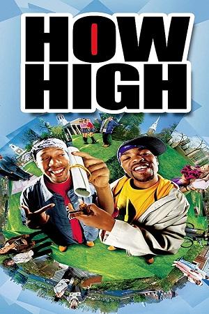 How High (2001) Hindi Dual Audio 480p 720p Bluray