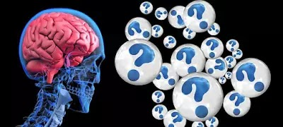 10 Interesting Facts About the Human Brain