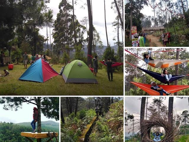 Wana Wisata Pasir Ipis, Spot Wisata Alam yang Makin Ngehits di Jayagiri Lembang