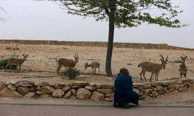 Israel investe em atrações turísticas no Deserto de Negev