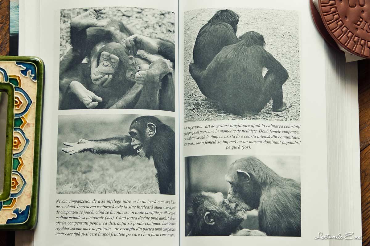interior Bonobo și ateul de Frans de Waal