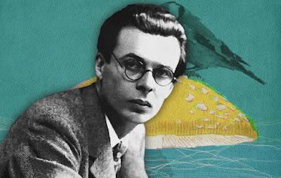 Montagem com o autor Aldous Huxley, parte de um texto sobre tecnologia.
