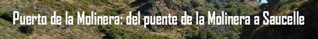 http://www.naturalezasobreruedas.com/2016/07/puerto-de-la-molinera-vertiente-norte.html