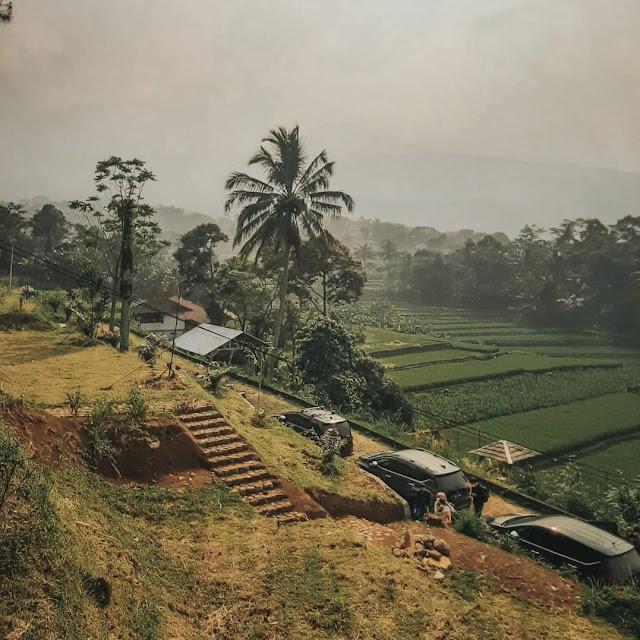 Kopi Salacca Bogor Jawa Barat
