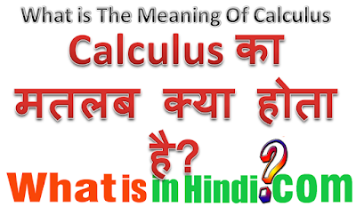 Calculus ka matlab kya hota hai