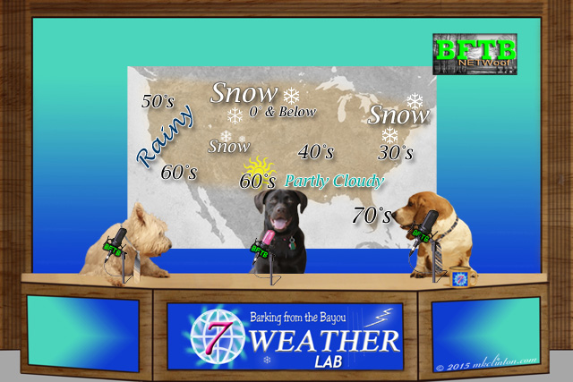 BFTB NETWoof Weather with our Weather Lab Paisley