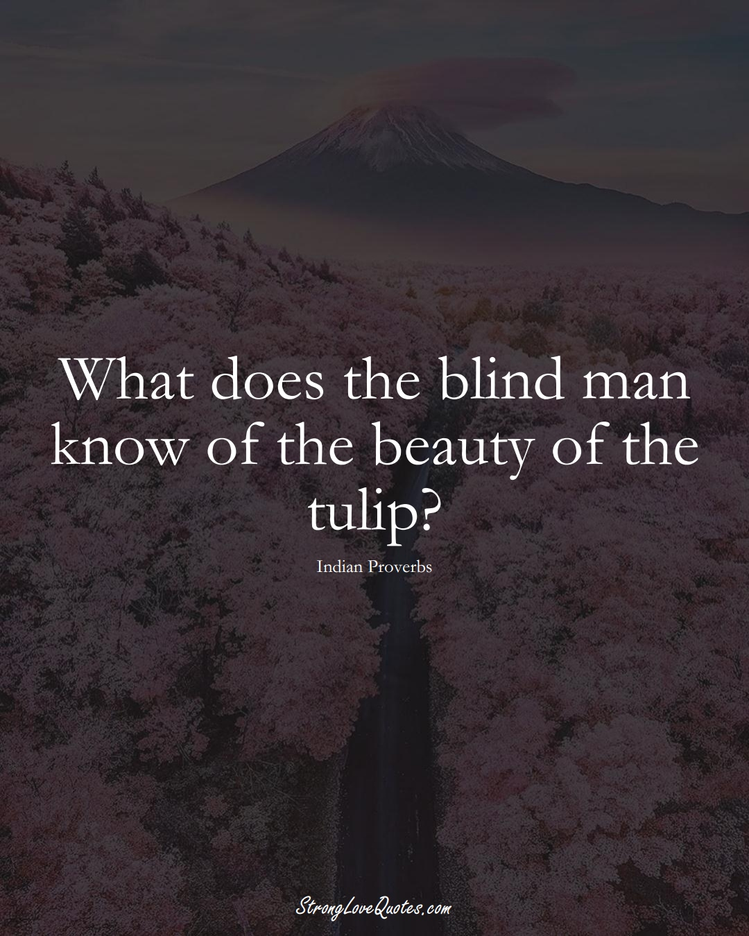 What does the blind man know of the beauty of the tulip? (Indian Sayings);  #AsianSayings