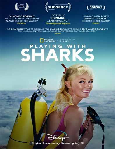 Pelicula Jugando con tiburones