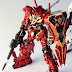 MG 1/100 RX-0-03 Unicorn Gundam 03 ROC Full Frontal Use Customized Build