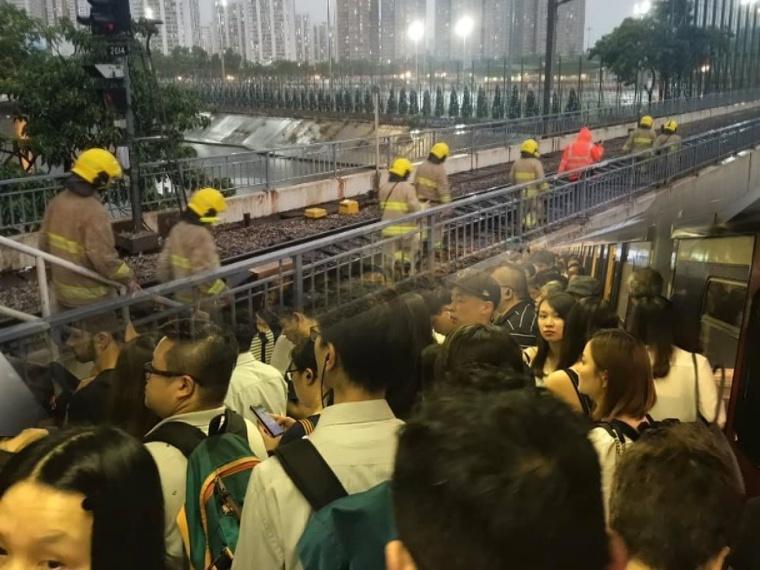 Layanan MTR Sempat Ditangguhkan Akibat Pohon Tumbang didekat MTR Tai Po Market