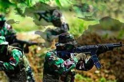 Kontak Senjata di Intan Jaya, Aparat TNI lumpuhkan 1 Anggota KSB