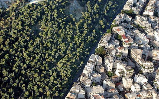 Εκδήλωση για τους δασικούς χάρτες στην Τερψιθέα