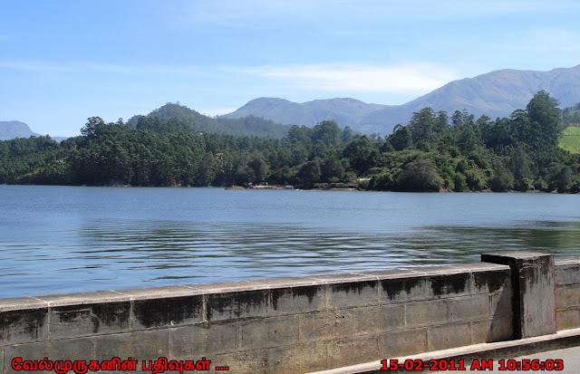 Munnar Mattupetty Dam