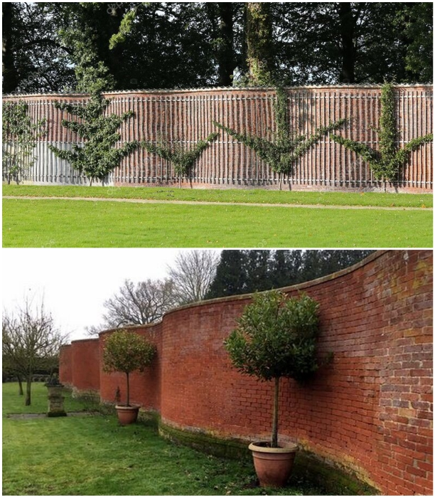 Crinkle Crankle Wall | The Wavy Brick Garden Wall In United Kingdom