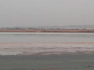 Larnaka Salt Lake, possibly showing flamingoes