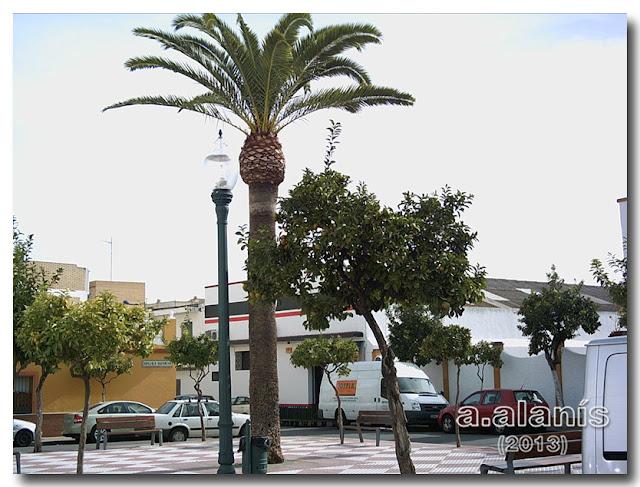 Plaza de Hidalgo Carret