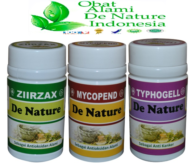 Obat penyakit kanker rahim herbal dan makanan pencegahnya ...