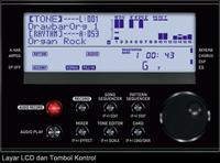 Download Style Rhythms Keyboard Casio WK 7600 6600 CTK 7200 6200 Gratis