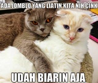 29 Meme Kata-Kata Lucu Andai Binantang Bisa Bicara Ini Kocak Banget