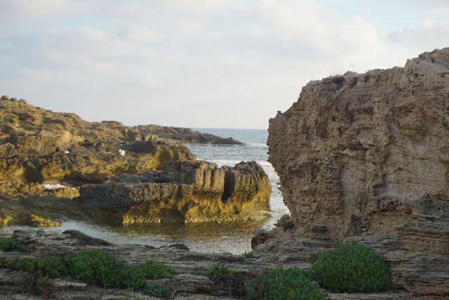 סלעים בחוף הבונים