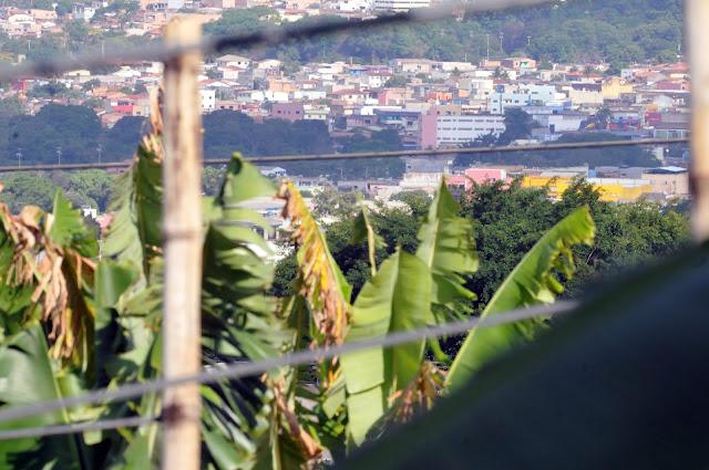 GDF incentiva horta comunitária em São Sebastião