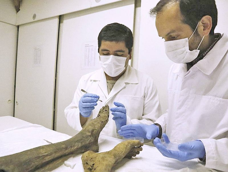Peritaje CSI a momia de soldado de la Guerra del Pacífico estableció cómo fue el disparo que causó su muerte