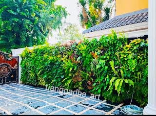 tukang taman vertikal garden dan jasa vertical garden tianggadha art