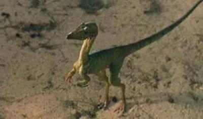 Nama-Nama Dinosaurus Compsognathus