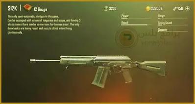 اسلحة البنادق لعبة ببجي