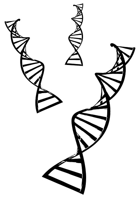 Who Discovered The Double Helix