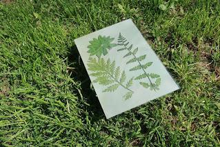 Zestaw do drukowania słonecznego z Tigera Flying Tiger Copenhagen zestaw kreatywny