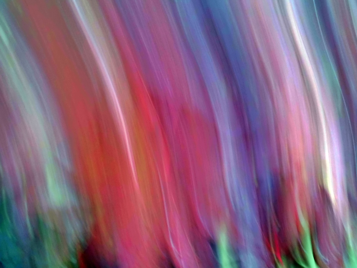 ICM: Intentional Camera Movement (3)